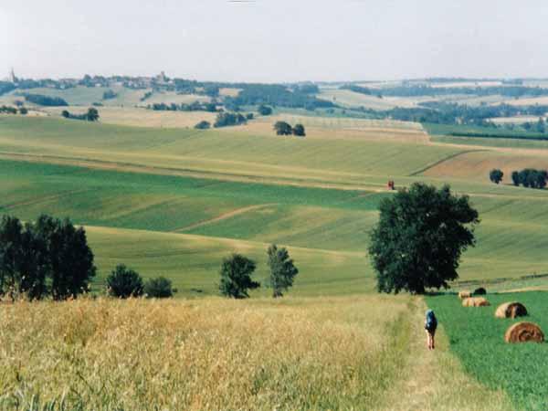 Walking in France: Rolling croplands of Gascogne