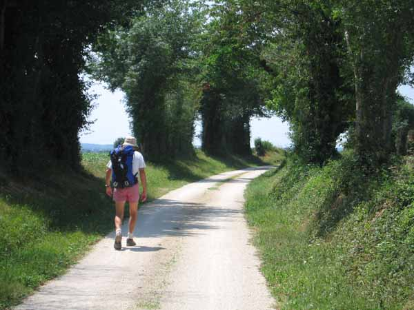 Walking in France: On the way to Brioux