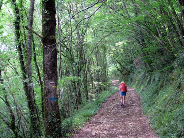 Walking in France: On the GR high above the Dordogne