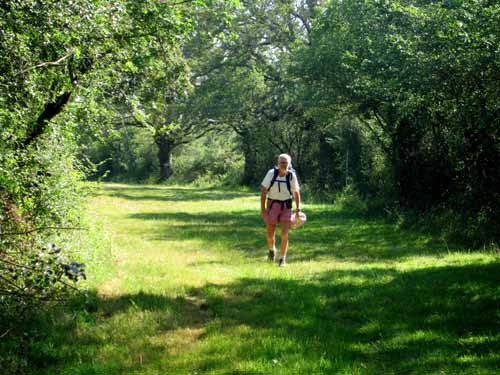Walking in France: On the way to Lusignan