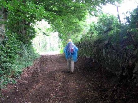 Walking in France: Still wet