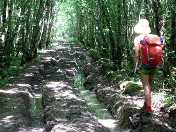 Walking in France: Heavy going