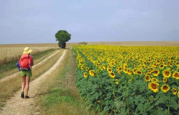 Walking in France: Heading for Cosne-sur-Loire