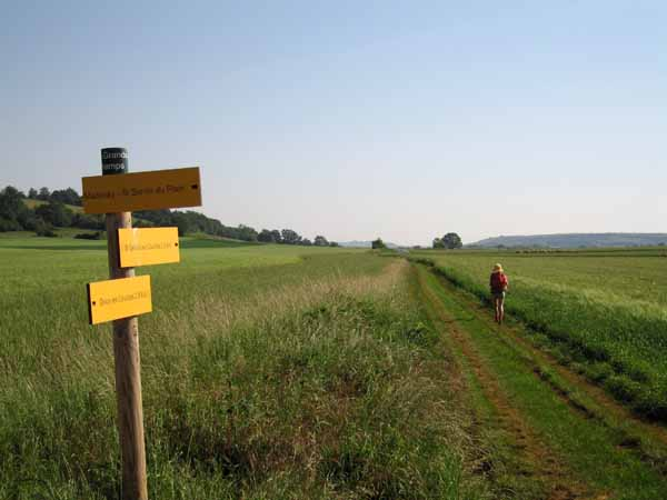 Walking in France: Beautiful walking after leaving Dracy-les-Couches
