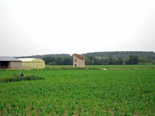 Walking in France: Farms near Chailles