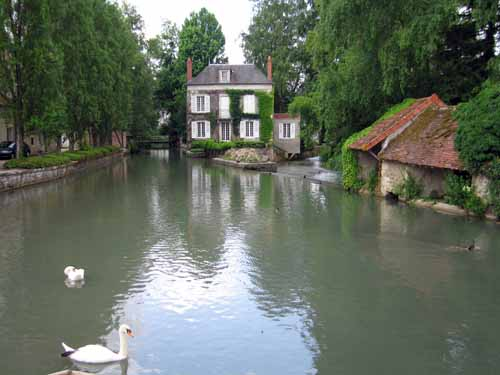 Walking in France: Swans on the Nohain, Donzy