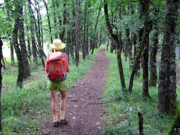 Walking in France: Back on the GR65
