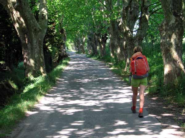 Walking in France: Leaving l'Isle-sur-la-Sorgue