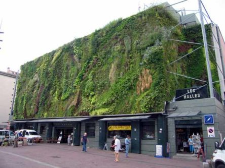 Walking in France: Les Halles, entirely clad in living plants, Avignon