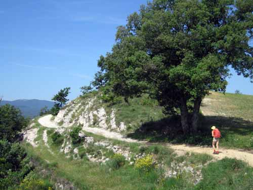 Walking in France: Approaching the Grand Luberon
