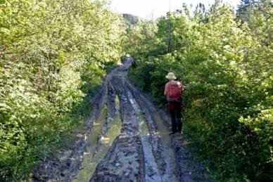 Walking in France: ... his muddy footsteps