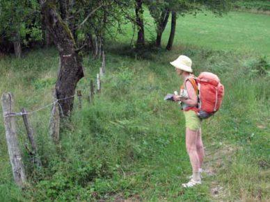 Walking in France: The GR in farmland
