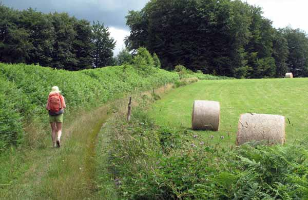 Walking in France: Approaching Lacelle