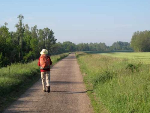Walking in France: On the levee bank