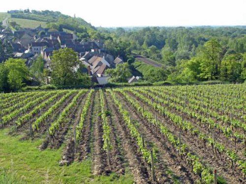 Walking in France: Descending towards les Loges