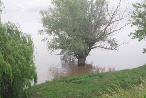 Walking in France: A misty, flooded Dordogne at Bergerac