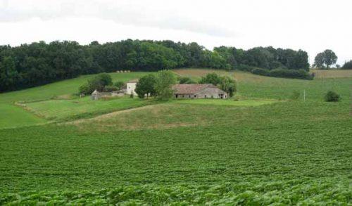 Walking in France: Farmhouse near Lougratte
