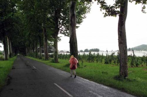 Walking in France: Between downpours beside the Lot
