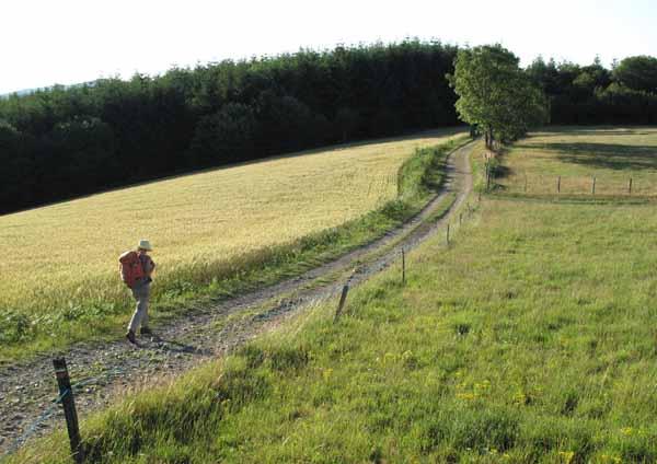 Walking in France: Striding past fields of ripe wheat