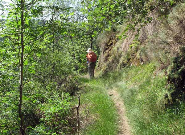 Walking in France: On the way down to the Loire again