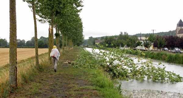 Walking in France: Passing some storm damage near Langon