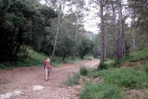 Walking in France: Unexpectedly in the Alpilles
