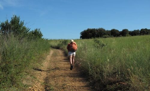 Walking in France: Another hot climb