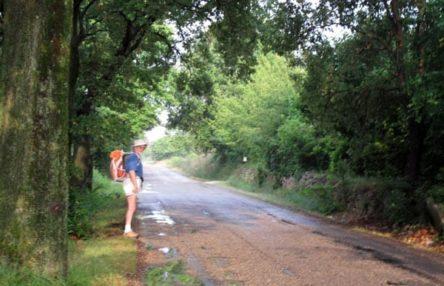 Walking in France: Leaving Lansargues on the D189