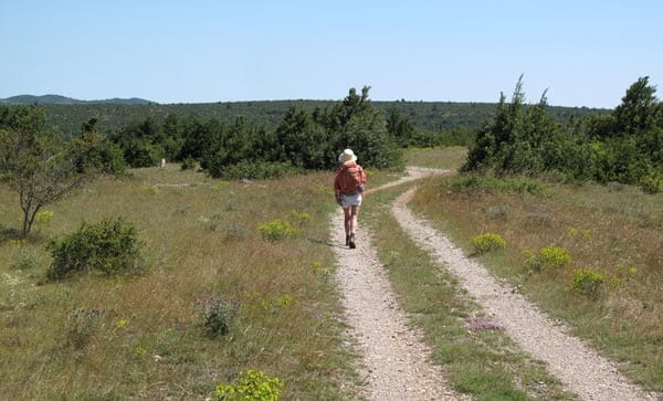 Walking in France: Hot on the causse