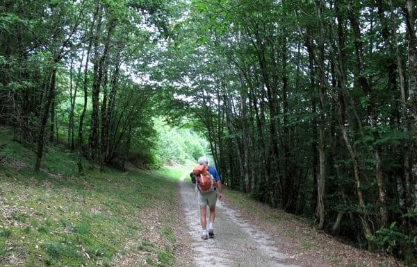 Walking in France: On the GRP des Monédières