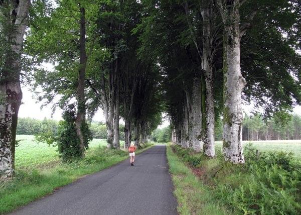 Walking in France: Out of the mud near la Villedieu