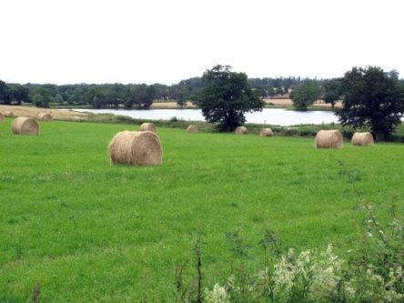 Walking in France: Haybales
