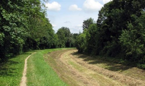 Walking in France: Hay field in the canal