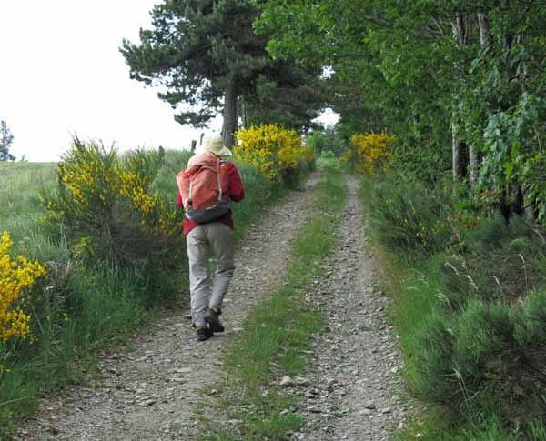 Walking in France: Climbing to le Thort