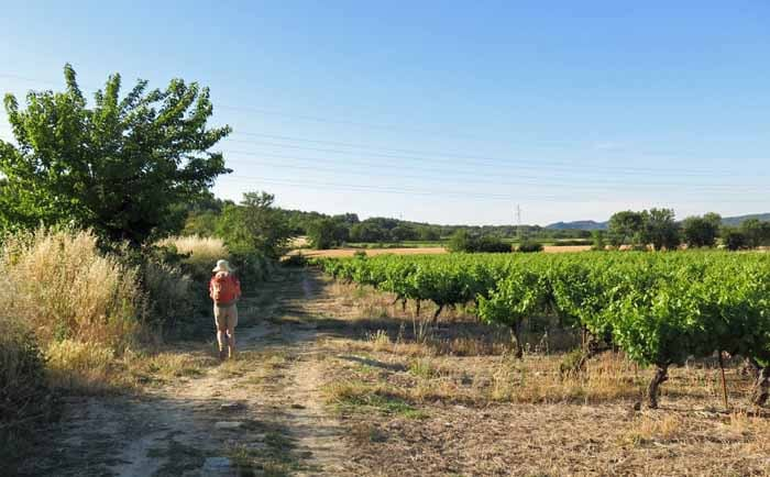 Walking in France: Approaching Ners and a possible coffee