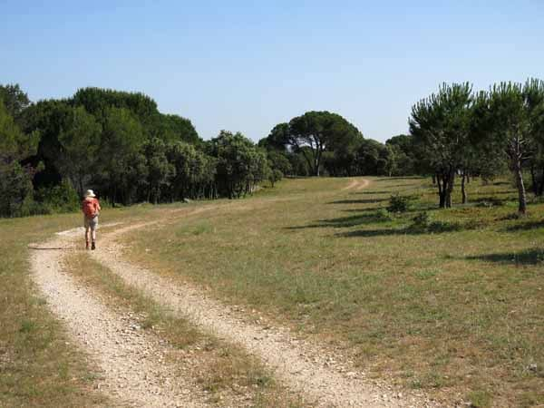 Walking in France: Trapped in a time-warp on the garrigue