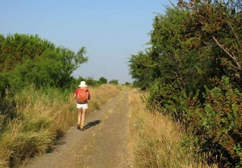 Walking in France: On the wheel track