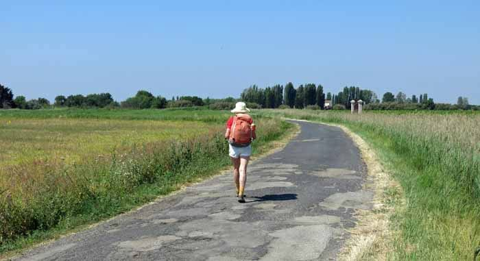 Walking in France: On the way to Serignan