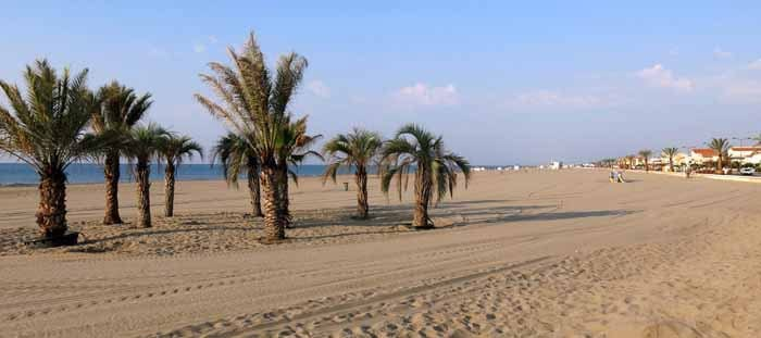 Walking in France: Potted palms on Narbonne Plage