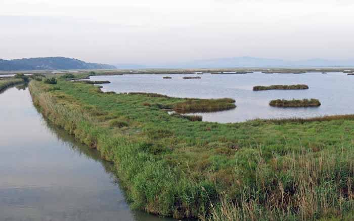 Walking in France: Crossing the sea marshes