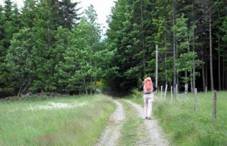 Walking in France: On the old main road