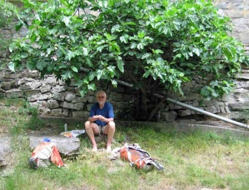 Walking in France: Lunch under a fig tree
