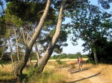 Walking in France: Passing the Domaine de la Jourdane