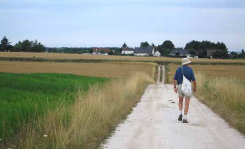 Walking in France: The old way from Paris to Spain, Bléré