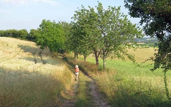 Walking in France: Back on the GR6