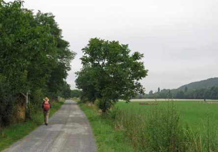 Walking in France: On the flood plain of the Vienne