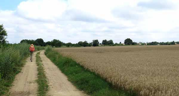 Walking in France: Out onto a broad plateau approaching Villeneuve