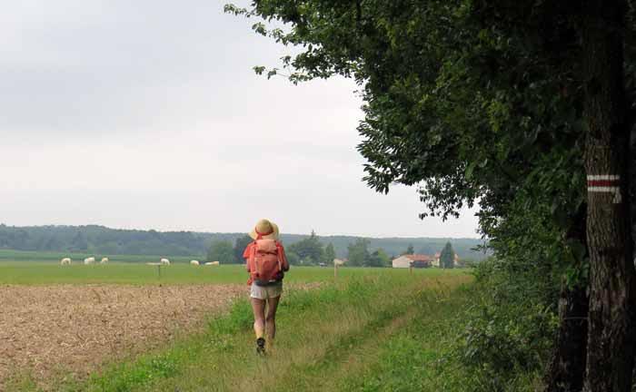 Walking in France: An idyllic rural scene