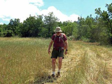 Walking in France: A short-cut through a farmer's field