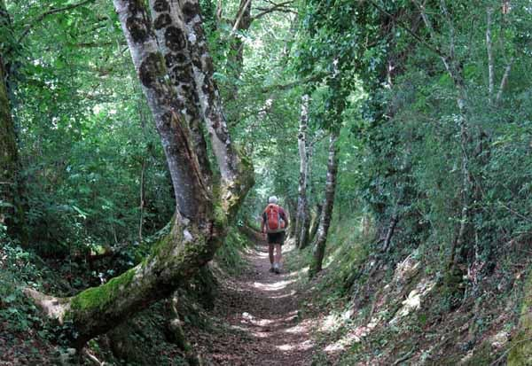 Walking in France: The walker's entry into Lacapelle-Marival